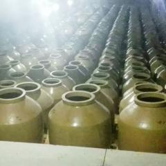 浙江洞藏酒窖